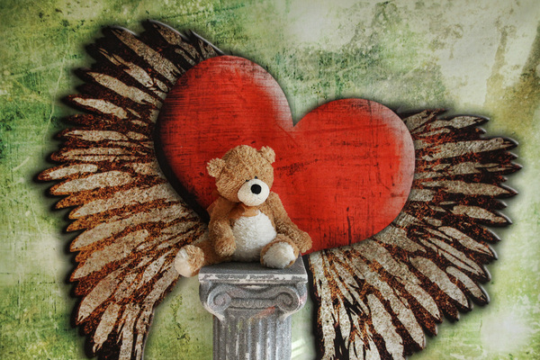 Heart Wings: a brown teddy bear photographed on a backdrop with a red hearth with wings