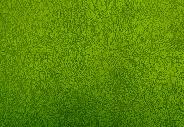 leathery look2: textured & green coloured leather covered surface