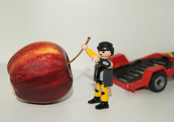 apple playmobil transporter