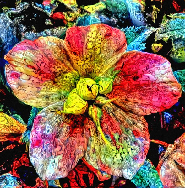 flowery art1A: multicoloured artistic rendering of photo showing helleborus flower