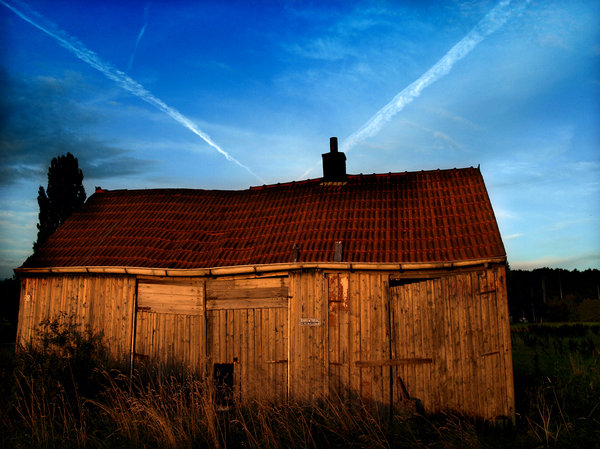 shed: old shed in the evening