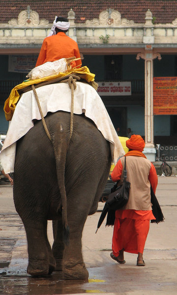 The Temple Elephant: The Temple Elephant with mahoot and consort