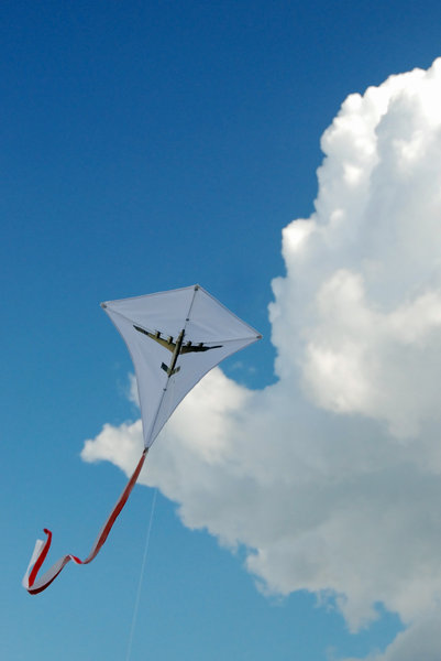 Kite 2: Kite with british bomber shape in the sky