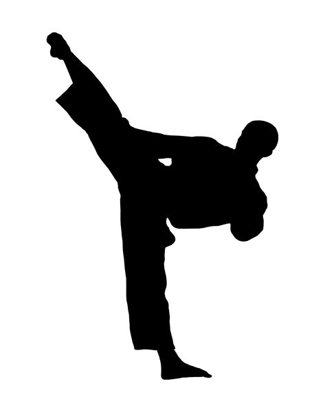 Karate 3: Silhouette of fighter