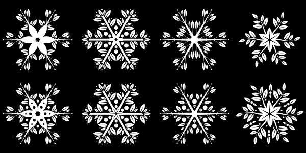 Floral Snowflakes: Floral Snowflakes on the black background