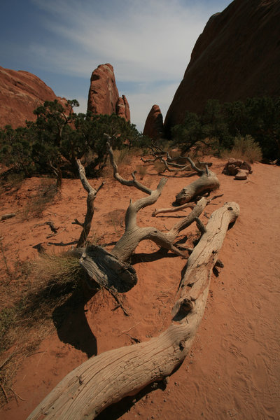 Old West 2: Landscape of Arches national park (Utah)