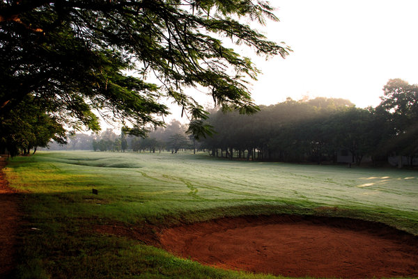 Golf Course: The Bangalore Golf Club is a morning destination for many passionate golfers in Bangalore. Also for walkers.