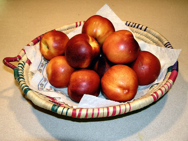 Basket of Peaches: Ripe peaches in a Mexican basket.