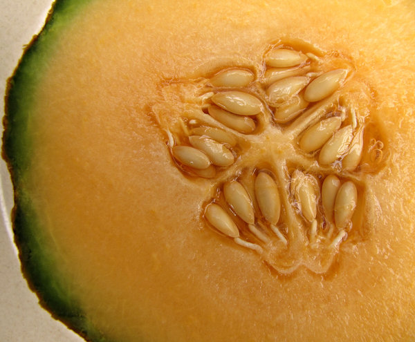 seedy surface: the smooth surface and seeds of a cut rock melon