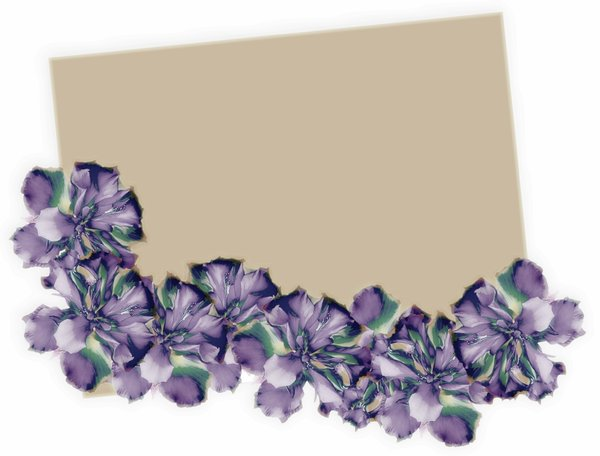 Floral Border Card 1: Plain card, tag or illustration with a floral border of hibiscus in purple and blue. Plenty of copyspace. Graphic and photo.