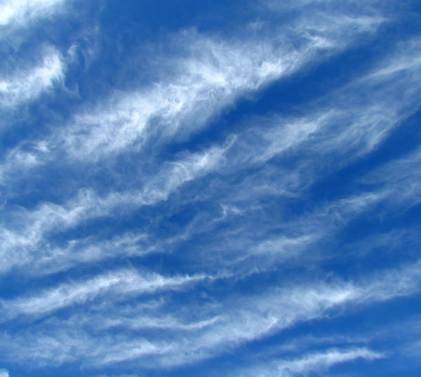 sky feathers1: fine light thin streaky cloud formations