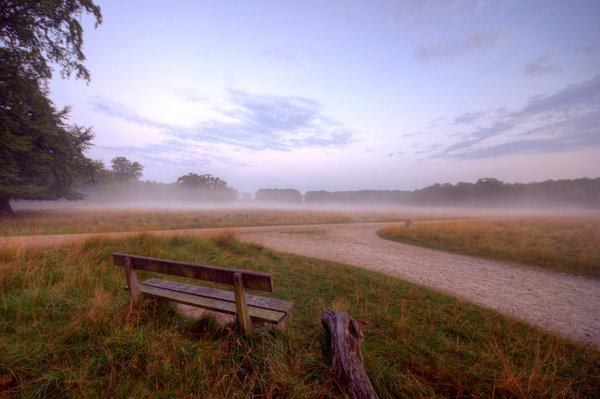 Morning in the park - HDR: Bench early in the morning before sunrise in a misty park with a view to a castle. The castle is Erimitage Castle, north of Copenhagen, Denmark.The image is HDR.