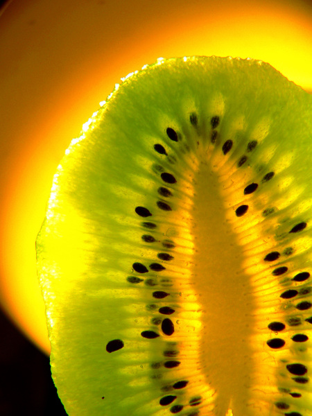 kiwi light: kiwi peace on the lamp