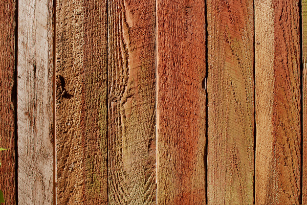 Wood Background 2: Wood texture for backgrounds.
