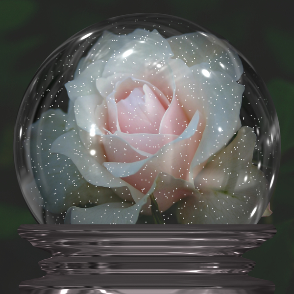 Rose in a Snowglobe: A pink rose in a snowglobe. You may prefer:  http://www.rgbstock.com/photo/nXaYBYc/Starry+Rose  or:  http://www.rgbstock.com/photo/mikJqII/Abstract+Rose+3