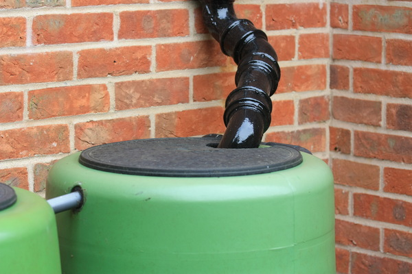 Water Butt Fill: Downpipe leading into a water butt, allowing it to be filled