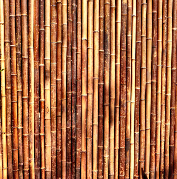 bamboo screen fence1: bamboo screen fencing