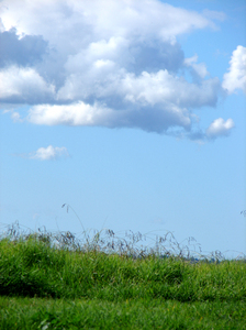Sky & Grass 2: A picture of the sky and grass