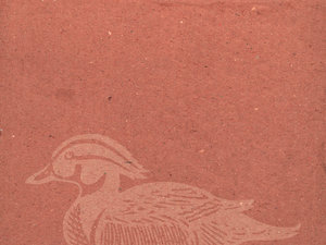 Duck Paper: Wallpaper with duck graphic.Please visit my stockxpert gallery:http://www.stockxpert.com ..