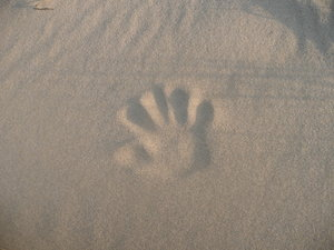 Print: My hand in the sand