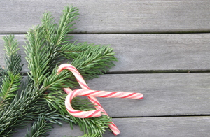 Christmas candy canes: Candy canes and a branch of a fir on wooden ground