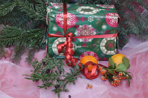 Under the Christmas Tree 1: Decorated present