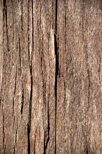 Old wood texture 4: Grunge wooden pattern