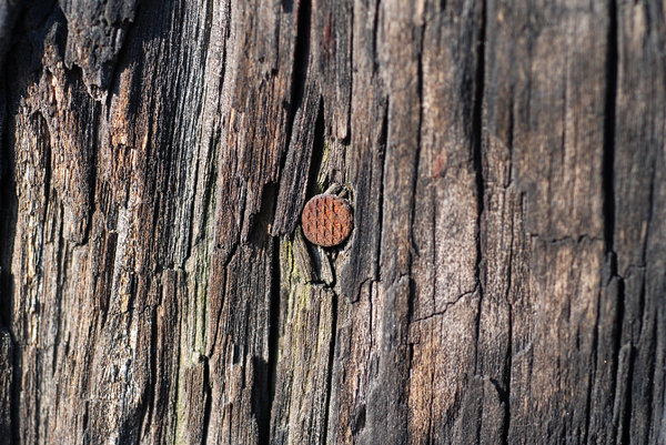 Old wood texture 2: Grunge wooden pattern