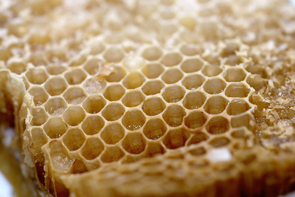 Honeycomb 5: Close-up of honeycomb