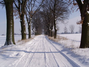winter road: winter road, last winter 2006