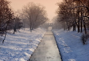winter landscape: winter landscapes with snow and frost