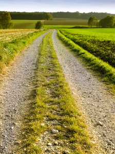 Simple Field Path: Simple Field Path - agricultural Landscape in Bavaria, Germany