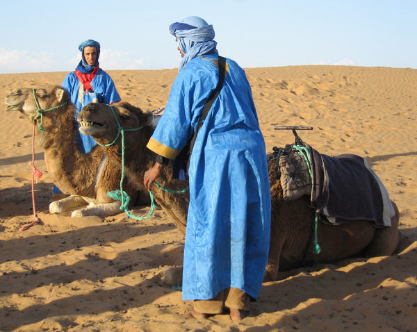 Camels and the Sahara: camel owners of the Sahara
