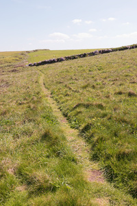 Countryside footpath: A footpath on a clifftop on the coast of Cornwall, England.