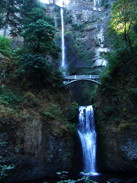 Multnomah Falls - Oregon: The Multnomah Falls are located on the Columbia River Gorge Forest area near Cascade Locks, Oregon, USA.  Wonderful area to walk and enjoy the day a holiday/vacation. Photo taken Aug 2015. Peaceful setting.