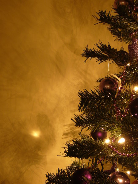 Graham's Christmas Tree 7: Everyone has been so nice about my Christmas Tree collection from last year I thought I'd create some more :) Last year's theme was silver and red - this year it's purple. Enjoy and, as always, I'd love to hear where you're using the photos!