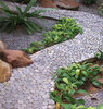 pebble path: pebbled garden path