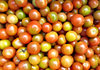 tomatoes - small round: small gourmet tomatoes - larger than cherry tomatoes but smaller than standard tomatoes