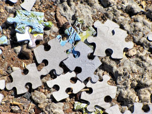 puzzling3: pieces of jigsaw puzzle scattered on roadside ground