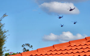 military flyover3: daytime military helicopter flying exercises