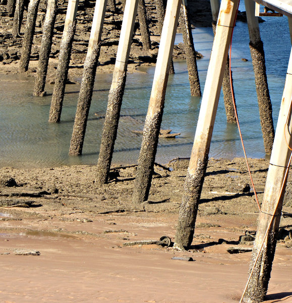 jetty support: angles and perspective of long jetty showing its pylons or support legs