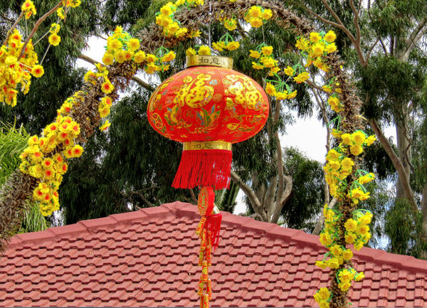home decorations2: garden and house decorations for Chinese New Year