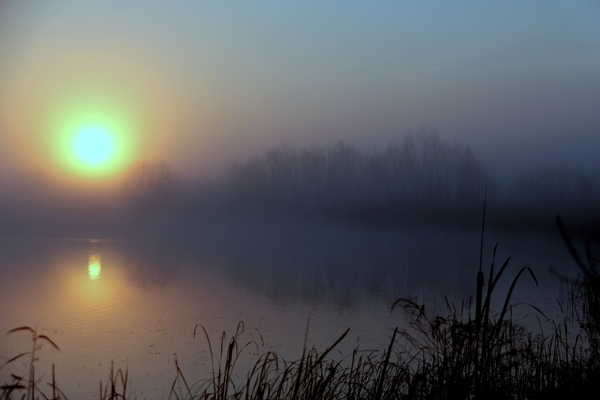 Sunrise in Texas: Faint light at dawn on large pond in Texas