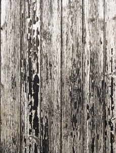Wood Texture Background: A grungy wooden background.