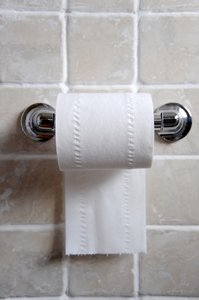 Toilet Roll: White paper toilet roll