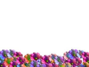 Free Stock Photos Rgbstock Free Stock Images Flower Wave