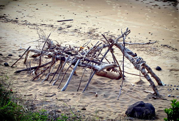 Beach Art: Primitive driftwood art on the beach. You may prefer:  http://www.rgbstock.com/photo/2dyVO3C/Driftwood