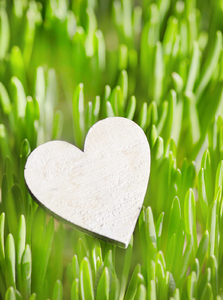 Wooden heart: Wooden heart on grass