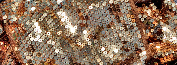 sequins in sunshine2