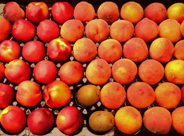 stone fruit tray1